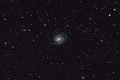 Messier 101 (NGC 5457) 03.2019 (ReppiX) Tags: astrofotografie astrophotographie astrophoto astrofoto skywatchen sterne galaxy galaxie astronomie astronomy astro stars m101 feuerradgalaxie pinwheelgalaxy canon nature natur teleskop telescop langzeitbelichtung deepsky deepskyobject deepskyphotography astrophysics ngc5457