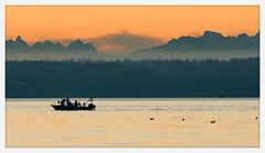 bounty (chickentender™ (Eyewanders Foto)) Tags: washingtonstate birds boat bounty clouds color dof eglon fish fisherman k3 mist mountains pentax pentaxda300mmf40 pointnopoint pugetsound sea silhouette spring sundaymorning sunrise water
