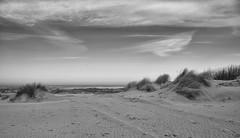 Quit (Zoom58.9) Tags: sky clouds dunes grasses sand beach ocean sea seascape landscape nature outside europe germany island borkum human wolken dünen gräser strand meer seelandschaft landschaft natur draussen europa deutschland insel canon eos 50d