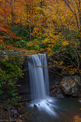 Cucumber Falls (clare j kaczmarek) Tags: laurelhighlands waterfalls autumn fall fayettecounty ohiopyle cucumberrun