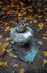 (geowelch) Tags: wardisland torontoislands marine patina rustyandcrusty weathered bollard leaves sonya6000 sonysel185535561855mm