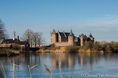Kasteel Muiderslot (Chantal van Breugel) Tags: landschap kasteel muiderslot muiderberg januari 2019 canon5dmark111 canon24105