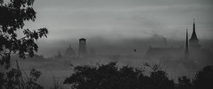 Mysterious city (Jean-Luc Peluchon) Tags: fz1000 city town ville shadow church eglise ombre panoramique panoramic fog haze brume brouillard dramatic building bw blackandwhite nb noiretblanc monochrome