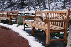 Bench (Au_cent3) Tags: superia fuji fm2n fm2 winter 35mm film nikon analogue filmisnotdead filmphotography