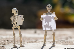 """""""Nothing in life is to be feared, it is only to be understood."""" ― Marie Curie (EatMyBones) Tags: mariecurie figurine miniature poseskeleton rement sipgoes53 skeleton toy toyphotography"""