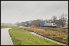 LTE 186 355, Zenderen (J. Bakker) Tags: lte traxx br186 186 355 akiem chengdu shuttle 43481 zenderen nederland