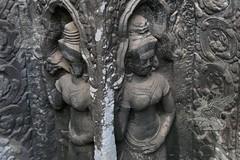 Angkor_Ta Prohm_2014_28