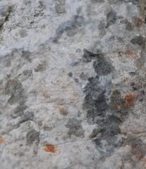 DSC_9100 (jgdav) Tags: ancient rock quartz pigment image macro blue ochre america pictograph