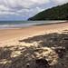 IMG_4723 Aussie Beach