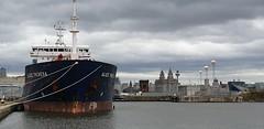 Alice Theresa at Birkenhead (O'Brien Photography) Tags: shipping ship samsungs9 birkenhead watercolour dpck