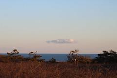 Cloud Over Dunes (NatureChaserPhotos) Tags: marconi wellfleet capecod trees sunset beach dune dunegrass sky ocean nature
