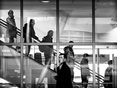 logical.universe (grizzleur) Tags: street streetphotography candid candidphotography bw mono monochrome omd olylove olympus olympusomdem10mkii olympusm75mmf18 airport escalator space spacing order chaos logic logical people lines diagonal