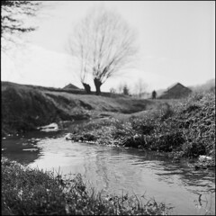 ** (Koprek) Tags: rolleiflex28f film analog 6x6 medium planar croatia zagorje desinić february 2019