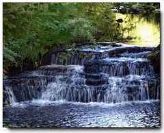 Running Water at Cragside........ (reign 60) Tags: smileonsaturday watermovecragsidenational trust