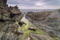 Blau i vert. (Ernest Bech) Tags: catalunya girona costabrava altempordà cadaqués rocks roques aigua water mar sea seascape landscape longexposure llargaexposició