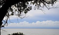 Cloud Bank (Mark A. Morgan) Tags: camarillo santabarbara california clouds ocean storm markamorgan