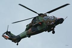 Eurocopter EC 665 Tigre HAP n° 2021 ~ BHN  ALAT (Aero.passion DBC-1) Tags: meeting cambrai 2011 dbc1 david biscove aeropassion avion aviation aircraft plane airshow eurocopter ec665 tigre hap ~ bhn alat helicopter helicoptere helico