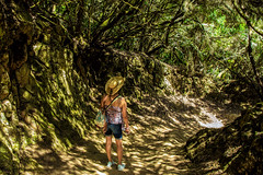 This Way (Walter Quirtmair) Tags: ifttt 500px hiking people woman tenerife jungle forest light greempath way track trail quirtmair spain hiker path exploring footpath active healthy living shorts