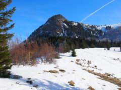 a Kakastaréj / the Creasta Cocoşului peak (debreczeniemoke) Tags: tél winter hó snow túra hiking erdő forest fa tree hegy mountain gutin gutinhegység gutinmountains sziklabérc piton kakastaréj creastacocoşului olympusem5