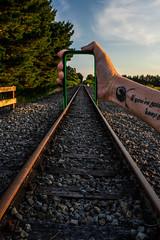 9 of 52 Weeks (Lyndon (NZ)) Tags: week92019 startingtuesdayfebruary262019 52weeksthe2019edition railway transport ilce7m2 sony wairarapa