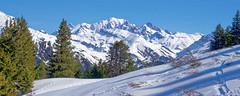 Mont Blanc au dessus du col du pré - Beaufortain (Lumières Alpines) Tags: didier bonfils goodson goodson73 dgoodson lumieres alpines montagne mountain europa outside france francia alpes alps skiing alpine alpini snow neige beaufortain roche parstire ski rando