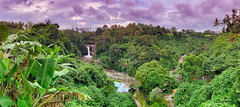 Tegenungan Waterfall (SjPhotoworld) Tags: indonesia bali explore flickr flickrelite ubud tegenungan waterfall sukawati kemenu nature lovers beautiful water green landscape bananatrees sky dramatic rainseason