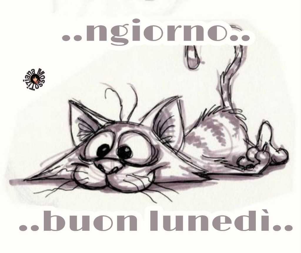 The Worlds Most Recently Posted Photos Of Buongiorno And Divertenti