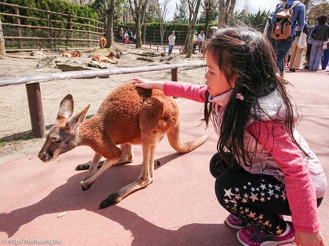 九州動物園-9530