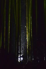 嵐 画像85