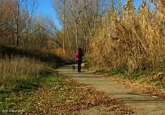 Paseos (kirru11) Tags: paseo camino gente chica perro árboles hierba pajas quel larioja españa kirru11 anaechebarria canonpowershot