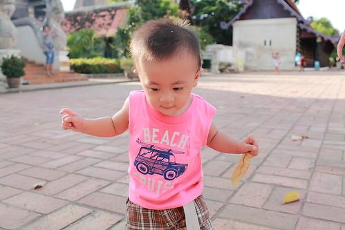 chiang-mai-thailand_16829106629_o