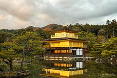 Kinkaku-ji (aizamazed) Tags: lake goldenhour zen temple japan kyoto goldenpavilion kinkakuji