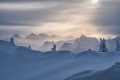 Winterstimmung am Hahnenkamm (stefangruber82) Tags: winter snow schnee alpen alps mountains berge tirol tyrol