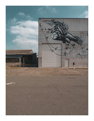 170726_123505_oly-PEN-f_oostende_the crystal ship 34/54 (A Is To B As B Is To C) Tags: aistobasbistoc b belgië belgium oostende ostend haven harbour vuurtorenwijk victorialaan depot graffiti street streetart building loods phlegm thecrystalship sky clouds wall concrete gate sign olympus penf color