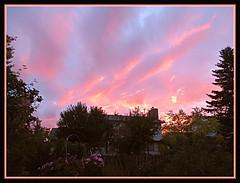Garden Sunrise (bigbrowneyez) Tags: gorgeous beautiful onfire clouds cielo nuvole bello bellissimo bright colourful artful glow glowing nature natura fantastic striking stunning fabulous lovely delightful magical fence flowers sepa gardensunrise sunrise alba puestadesol