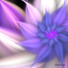 Sensetive Lover (bloorose-thanks 4 all the faves!!) Tags: apophysis apo abstract art fractal flame flower floral digital
