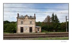 La gare abandonnée (Rémi Marchand) Tags: gare voieferrée abandon aisysurarmançon yonne canon5dmarkiii caténaire rail ferroviaire gareabandonnée chemindefer sncf réseauferré plm ligneplm
