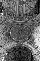 The rooftop of Mosque Cathedral Cordoba (HansPermana) Tags: cordoba spain spanien españa eu europe europa südeuropa southerneurope iberianpeninsula umayyad umayyadcaliphate mezquitacatedral mosquecathedral historic oldbuilding interior ornament monochrome blackandwhite