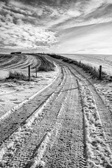 The Track to George's Place (Paul Timlett) Tags: fujixpro2 landscape orcheston winter wiltshire bnw monochrome blackwhite outdoors rural 35mm orchestondown snow