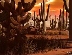 Sunset over the forgotten (Alex Avion (AA Photography)) Tags: catus desert sunset junker rust car rusty forgotten grauland sl secondlife artistic