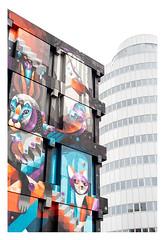 Clash (leo.roos) Tags: dehopman straatkunst streetart streetwiseproject urbanartstudio terraart tobiasbeckerhoff karskibeyond michadebie bierbrood saidkinos sjorskouthoofd iameelco zoetermeer makroplanart250 makroplanar502zf a7rii carlzeissmakroplanar502 zf cz darosa leoroos muurschildering mural muralism graffiti graphitti grafitti wallart graphiti