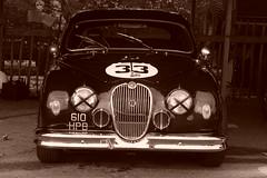 Jaguar Mk1 1959, HRDC Track Day, Goodwood Motor Circuit (2) (f1jherbert) Tags: sonya68 sonyalpha68 alpha68 sony alpha 68 a68 sonyilca68 sony68 sonyilca ilca68 ilca sonyslt68 sonyslt slt68 slt sonyalpha68ilca sonyilcaa68 goodwoodwestsussex goodwoodmotorcircuit westsussex goodwoodwestsussexengland hrdctrackdaygoodwoodmotorcircuit historicalracingdriversclubtrackdaygoodwoodmotorcircuit historicalracingdriversclubgoodwood historicalracingdriversclub hrdctrackday hrdcgoodwood hrdcgoodwoodmotorcircuit hrdc historical racing drivers club goodwood motor circuit west sussex brown white sepia bw brownandwhite