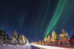 Z19_0303 LT (Zoran Babich) Tags: winter snow lapland lappi finland suomi northernlights auroraborealis