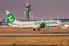 [ORY.2019] #Transavia.France #TO #TVF #Boeing #B737 #B738 #F-GZXH #awp (CHRISTELER / AeroWorldpictures Team) Tags: transaviafrance to tvf french airlines lowcost boeing b737 b738 b737800 wl 7378k2 msn413435860 cfm cfm56 fgzhx y189 lease alc plane aircraft airplane avion aviation avgeek aeroworldpictures awp team christeler spotter spotting planespotting paris orly ory lfpo nikon d300s raw nef lenses nikkor 70300vr lightroom orlyairport atc twr aéroport landing sunset