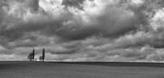 on my way (Bim Bom) Tags: saintdonat chapel trees landscape bw belgium wallonia liège