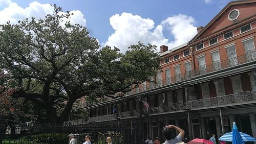 Typische Häuser in New Orleans