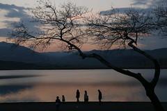 #landscapephotography #sunset #lake #nofilter (khuskivadzeketi) Tags: landscapephotography nofilter sunset lake