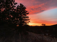 Allenspark Sunrise (RkyMtnGrl) Tags: landscape nature scenery vista sunrise morning daybreak pines mountains valley allenspark colorado 2019