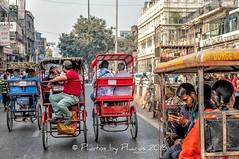 Old Delhi 2018 (Julie H. Ferguson (Photos by Pharos)) Tags: travel india newdelhi markets shopping olddelhi rickshaws traffic chandnichowk