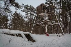 IMG_8772_edit (SPihtelev) Tags: ладога ленинградская область эхо войны берег ладоги озеро зима ladoga